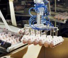 事例 ロボット 01 食品搬送装置:ユニバーサルロボット(協働ロボット)